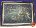 ภาพ The Birth of Venus