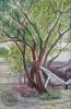 ภาพเขียนสีน้ำ ภาพศาลาวีรชน มจธ. วาดโดย นายพจน์ เมธี โคตรสุโพธิ์