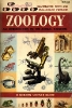 Zoology : an introduction to the animal kingdom